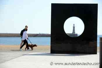 Nine things to do at Sunderland's seaside as temperatures continue to rise - Sunderland Echo