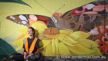 New mural in Border laneway rewards both creator and passers-by - The Border Mail