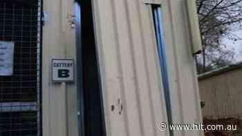 Albury Cat Burglar Still At Large - Hit 107