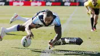 Melbourne beat Warriors, lead NRL ladder - The Maitland Mercury