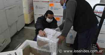 Desarticularon un vacunatorio clandestino en San Rafael - Los Andes (Mendoza)