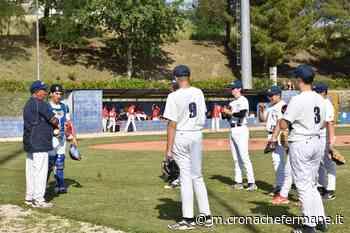 Consuntivi settimanali in agrodolce per il Montegranaro Baseball & Softball - Cronache Fermane