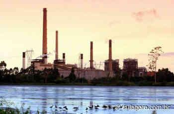 Engie aprova Programa de Demissão Voluntária que deve afetar a usina de Capivari de Baixo - Sul. Agora