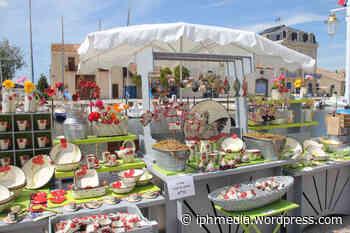 MARSEILLAN : La ville accueille son 6ème marché de potiers. - IPH Média