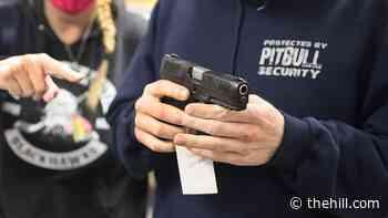 Rising crime rejuvenates gun control debate on campaign trail | TheHill - The Hill
