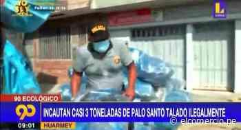 Huarmey: decomisan gran cantidad de palo santo talado ilegalmente - El Comercio Perú