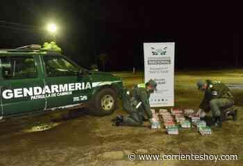 Incautan 450 frascos de medicamentos ilegítimos en Corrientes - CorrientesHoy.com