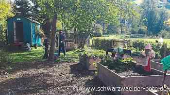 Flüchtlingshilfe - Baiersbronner Integrationsmanager spricht über Pläne - Schwarzwälder Bote