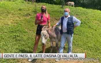 Gente e Paesi, il latte d'asina di Vall'Alta di Albino - L'Eco di Bergamo