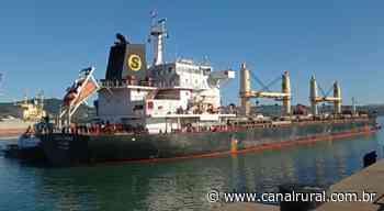 Navio com 30 mil toneladas de milho chega ao porto de Imbituba - Canal Rural