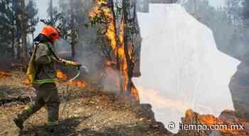 Muestra Conagua plumas de humo en Chihuahua por incendios - El Tiempo de México