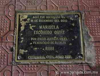 Conmemoran natalicio de Marisela Escobedo, activista en Chihuahua - La Jornada