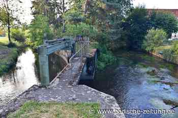 Die Gemeinde Gottenheim will die Hochwasserfrage geklärt haben - Gottenheim - Badische Zeitung - Badische Zeitung