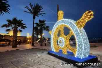 Luminarie a tema marino sul lungomare di Manfredonia, l'iniziativa di un gruppo di commercianti per abbellire la città - l'Immediato - l'Immediato