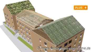 In Pfuhl entstehen drei neue Wohnhäuser mit grünen Dächern