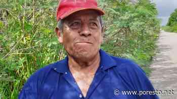 Don Buenaventura arriesga su vida para obtener ingresos en José María Morelos - PorEsto