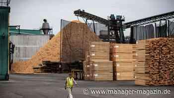 Holz: Nach dem Boom brechen die Preise in den USA wieder ein
