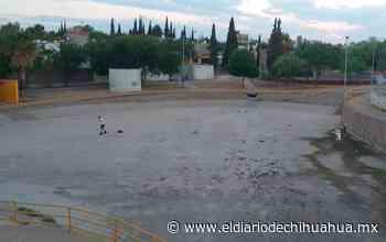 Abandonada y sucia área de patinaje en El Palomar - El Diario de Chihuahua