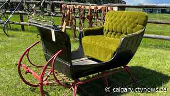 Alberta family auctioning off one of the largest private collections of horse-drawn carriages in North America - CTV Toronto