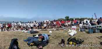 320 kg de basura retirados de la playa de Cuchía se canjearán por comida para el Banco de Alimentos - EcoAvant.com