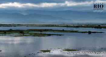 EN IMÁGENES: Así avanza la recuperación de la laguna de Fúquene - Semana