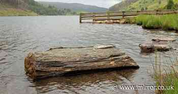 TripAdvisor reviewer slams Welsh lake for not having a McDonald's nearby