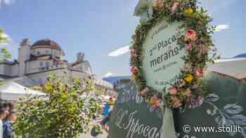 FLOWER & NATURE MERANO VITAE AT ITS BEST 18.-20. JUNI 2021 Meran steht, durch seine - Stol.it
