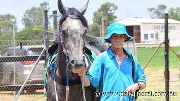 Wishfilly wins Country Winter Classic heat for Dubbo trainer Michael Lunn - Daily Liberal