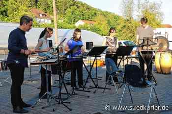 Waldshut-Tiengen: Klänge aus dem Fernen Osten: Open-Air-Konzert mit Black Forest Percussion Group begeistert Publikum - SÜDKURIER Online