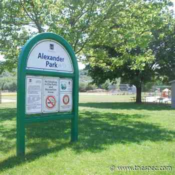 Dundas volunteers sought for Alexander Park skate park working group - TheSpec.com