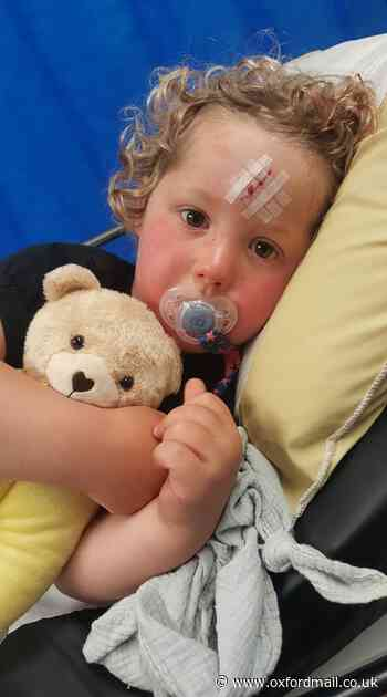 Appeal to trace 20,000 teddies given to children in Oxfordshire