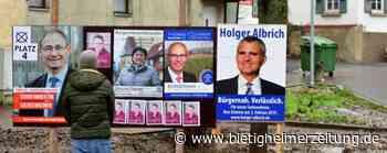 Parteien müssen in Sachsenheim selber aktiv werden : Keine Tafeln für Wahlplakate - Bietigheimer Zeitung