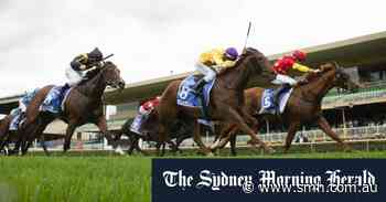 Tips and race-by-race preview for Warwick Farm on Monday - Sydney Morning Herald