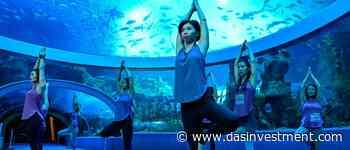 Pariser Asset Manager startet Wellness-Fonds - DAS INVESTMENT.com