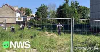 Verdachte dodelijke steekpartij Evere weer vrijgelaten, maar meteen nieuwe verdachte opgepakt - VRT NWS