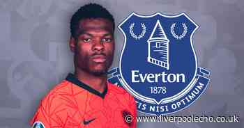 Denzel Dumfries answers vital Everton question at the wrong time