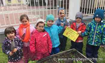 Kita-Kinder pflegen Hochbeete in Neutraubling - Landkreis Regensburg - Nachrichten - Mittelbayerische