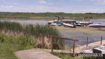Future of Lakefield Park & Campground to be determined   Watch News Videos Online - Globalnews.ca