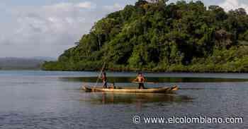 Tribugá, en Nuquí - Chocó, está listo para mostrar su mejor cara al turismo - El Colombiano