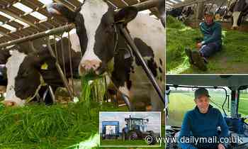 Viewers' horror at BBC Countryfile as host Matt Baker visits dairy farm with 'zero grazing system'