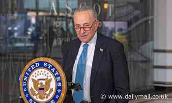 Schumer says Trump's DOJ showed the 'fingerprints of a dictatorship' by targeting Dems, reporters