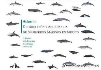 Crea CICESE un Atlas de mamíferos marinos - Ensenada.net