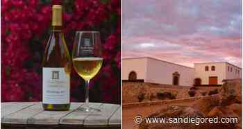 Reconocen en España a vino de Ensenada como el mejor de México - SanDiegoRed