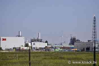 Eet geen eigen eieren: Vlaamse regering neemt maatregelen in Zwijndrecht na PFOS-vervuiling