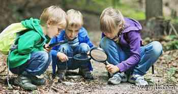 Sorge steigt vielerorts: Ringen um Lösungen für Kinderbetreuung - Tiroler Tageszeitung Online