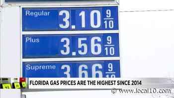 Los precios de la gasolina en Florida son los más altos desde 2014 - WPLG Local 10
