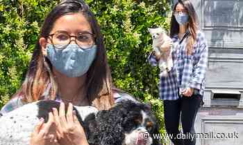 Olivia Munn goes barefoot to get her beloved dogs groomed outside her LA home