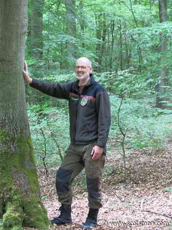 Why people can emulate animals and get closer to nature - Peter Wohlleben - The Scotsman