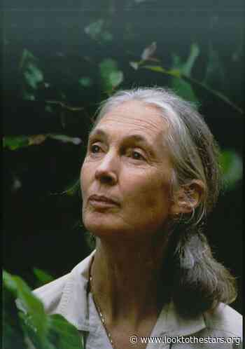 Jane Goodall Awarded for Lifetime of Service to Animals at Star-Studded Gala Benefiting Mercy For Animals - Look to the Stars