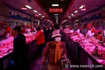 Market Selling Live Wild Animals Pose Huge Risk For Human Health: Lancet - News18